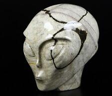 "Huge 4.5"" SCALED AGATE Carved Crystal Alien Skull With Neck, Crystal Healing"
