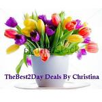 TheBest2Day Deals By Christina