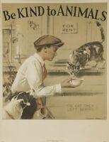""""""" Sein Nettes Zu Tiere"""" Vintage A3 Plakat (Replik Veterinär Bild Pets Hund Cat"""
