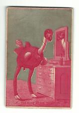 Old Trade Card Climax Cook Stove York Stove Co PA Ostrich Bird Dude At Toilet