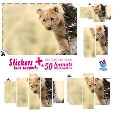 STICKER LION LIONCEAU SAVANE AUTOCOLLANT DECO MURAL DECORATION LI-04
