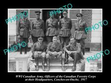 OLD LARGE HISTORIC PHOTO OF WWI CANADIAN ARMY THE FORESTRY CORPS OFFICERS 1917
