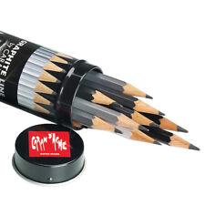 15 x Caran D'Ache Graded Artist Grafwood Pencils Metal Case Graphite Line 9B-4H