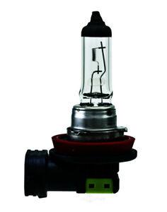 Cornering Light-Headlight Bulb Hella H11