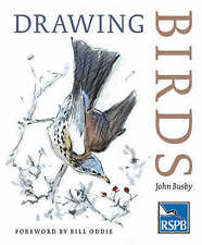 Drawing Birds by John Busby (Paperback, 2004)