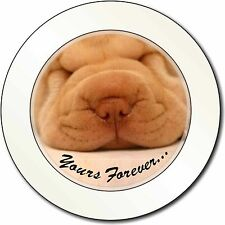 Shar-Pei Puppy 'Yours Forever' Car/Van Permit Holder/Tax Disc Gift, AD-90yT