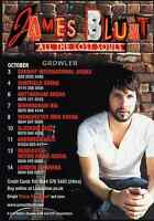 JAMES BLUNT - 2008 TOUR FLYER - GENUINE RARE LIVE CONCERT MUSIC PROMO