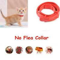 Plastic Cat Adjustable Pet Collar Neck Strap Remedy Anti Flea Mite Acari Tick