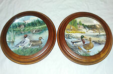2Plates 1986 Living with Nature Bart Jerner`s Ducks The Mallard, Pintail Knowles