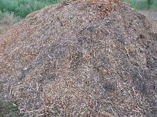Reg RT A Box (1 1/3 Gallons) Colorado Spruce Smoking/Garden Wood Chips/Mulch 3LB