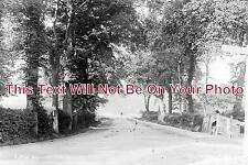 LI 229 - Low Road, Spalding, Lincolnshire c1907 - 6x4 Photo