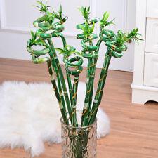 1Bunch Artificial Lucky Bamboo Tree For Home Wedding Party Birthday Decor FBCA