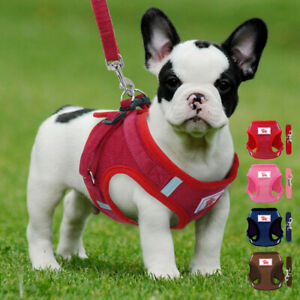 Reflective Pet Dog Harness & Leash Soft Mesh Padded Cat Puppy Walking Vest XS-L