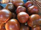 tomato, BLACK PRINCE, rare heirloom, 20 seeds! GroCo buy US USA