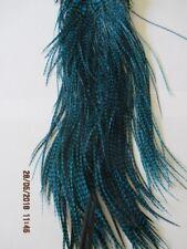 metz saddle grizzle turquiose saddle grade 2  flytying hair feathers
