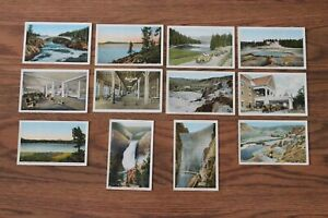 Vintage Postcards Yellowstone J.E. Haynes Photo Colored Linen ? Lot Unposted