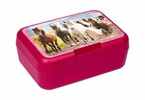Galloping Horses Sandwich Box- Horse Lunch Box- SALE