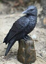"Mythical Creature Fantasy Decor Legendary Dark Raven on Cliff Top Figurine 6""h"