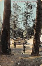 Wilsons Peak California~Camp Life~Boy Pushed in Big Tree Swing~1908 Postcard