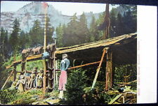 Alaska ~ 1910 Indian Burial Ground ~ Totem Pole & More !