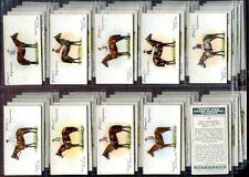 Tobacco Card Set, John Player & Sons, DERBY & GRAND NATIONAL WINNER,Horse,Jockey