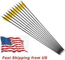 12Pk 30inch Pure Carbon Arrow Practice Hunting Arrows with 4inch Turkey Feather