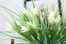 1 PCS Artificial Plastic White flowers Green Leaves Grass Home Decoration F372