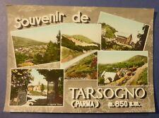 MAXI CARD - SOUVENIR DI TARSOGNO - PARMA 1961