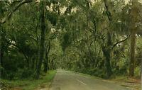 Postcard Road To Summervill, SC
