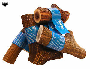 The Original, 100% natural, Antler Dog Puppy Chew, all sizes