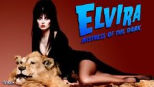 Hollywood Celebrity Art Photo Poster:  ELVIRA |21 inch by 36 inch| 04 80'S
