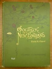 1886 OOLOGY of NEW ENGLAND Elwin A Capen BIRD EGGS Ornithology 25 COLOR PLATES