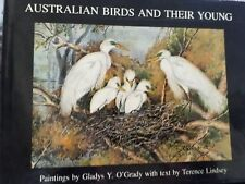Australians Australian  Birds And Their Young Paintings Gladys