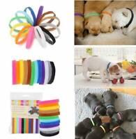 12pcs/set Adjustable Newborn Puppy ID Collar Pet Kitten Colors Cat Band Whelping