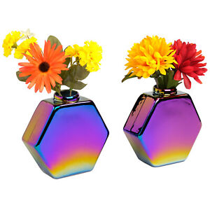 """Glass Rainbow Flower Vase: Colorful Wall Mountable Vase (5""""x5.25"""" - Pack of 2)"""