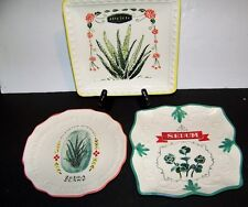 Appetizer Plates   Aloe Vera, Zebra Plant, Sedum Designs   By Magenta  Set of 3