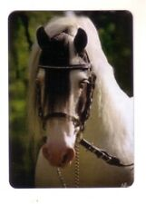 Gypsy Vanner Horse   -- Linen Modern Wide Swap Playing Card