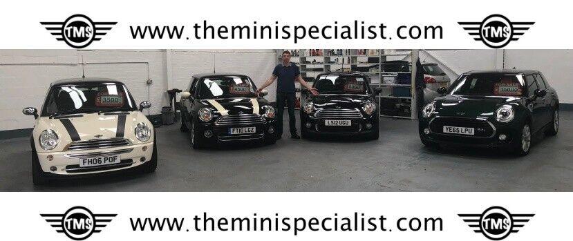 The Mini Specialist