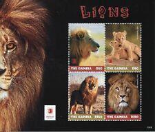 Gambia 2019 MNH Lions Singpex 2019 4v M/S Mammals Big Cats Wild Animals Stamps