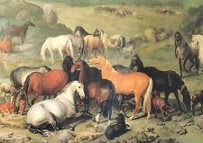 Lipizzaner Stutenherde Fohlen Pferde Gemälde von Hamilton K&K 38 Büttenfaksimile