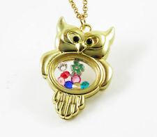 Living Floating Charm Memory Golden Owl Locket Necklace+13pcs