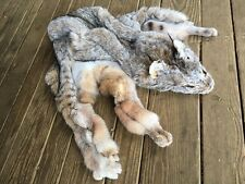 XXL LYNX Fur Pelt Skin Taxidermy Hunting Tanned Log Cabin Decor coyote fox