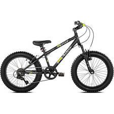 """20"""" Boys Genesis Rock Blaster Fat Tire Mountain Bike"""