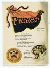 Princeton College Flag Seal Song Yell S23 cigarette silk tiger 239