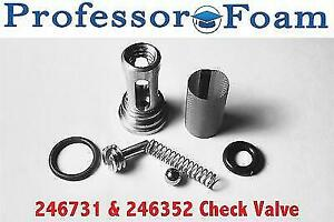 "246731 ""A"" Check Valve Assembly fits Graco Fusion AP From Professor Foam USA"