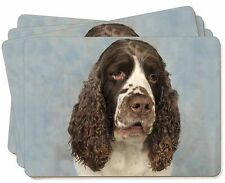 Springer Spaniel Dog Picture Placemats in Gift Box, AD-SS9P
