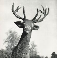 1955 Vintage SAINT LEGER EN YVELINES Cement Deer France 11x14 By ROBERT DOISNEAU
