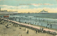 Postcard Beach Scene North from Young's Old Pier, Atlantic City, NJ