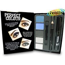 Perfect Colour Smokey Eyes Make Up Gift Set Eye Shadow Pencil Mascara Applicator