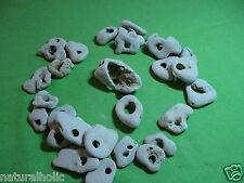 holey rock craft beach hag stone natural sale stones lot  rockes pendant bead